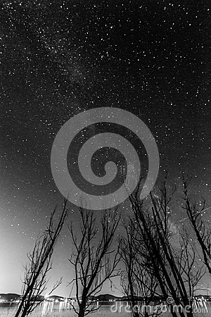 Free View Of The Milky Way Over Some Trees Near A Lake Royalty Free Stock Images - 101002709