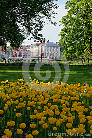 Free View Of The University Building 12 Boards On The Background Of B Royalty Free Stock Photography - 64084247
