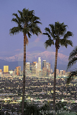 View through palm trees of Los Angeles skyline