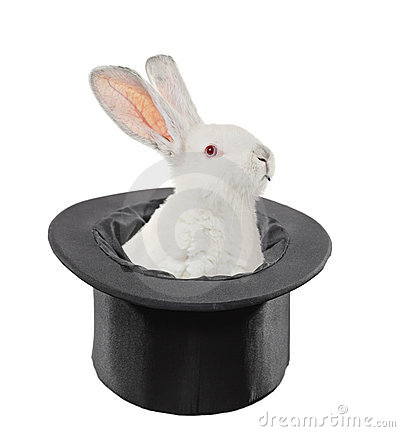 A view of a rabbit in a top hat