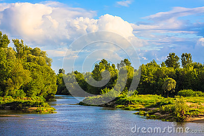 View Of A River And The Forest