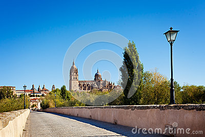 View of Salamanca from the Roman bridge