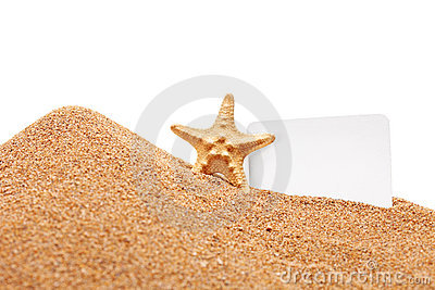A view of a sea star and a white blank card