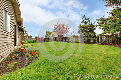 View of simple fenced backyard