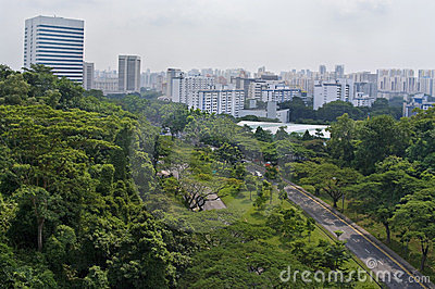 A View of Singapore City