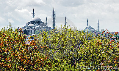 View of Suleymaniye and Fatih Mosques in Istanbul