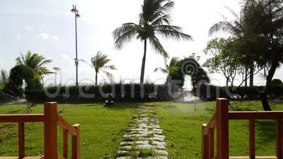 View from the terrace to the sea. View from the wooden terrace to the sea. Automatic watering green grass. Coconut trees pounding in the wind stock video footage
