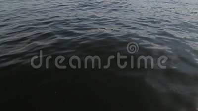 A view of the water from moving boat.  stock footage