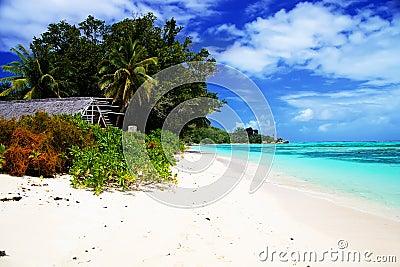 View of white sandy beach Anse Union