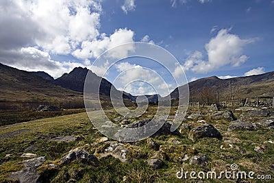 Views to Trefyn