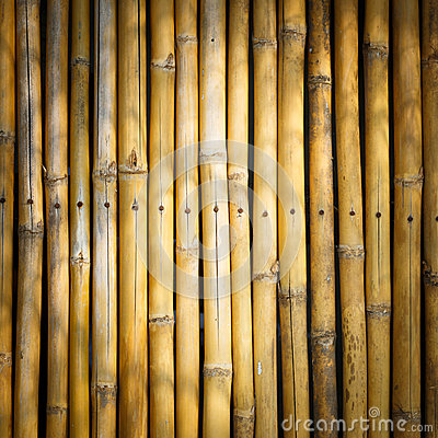 Vignette style Bamboo stick background