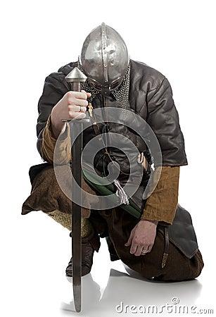 Free Viking Royalty Free Stock Photo - 18578765