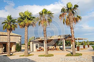 Villa and palm trees