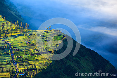 Village and Cliff at Bromo Volcano, Indonesia