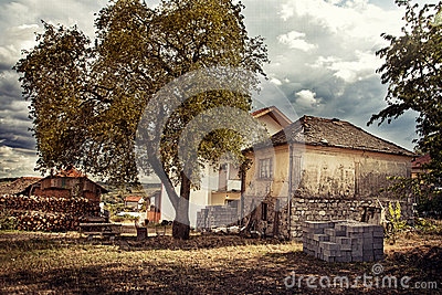 Village house with tree