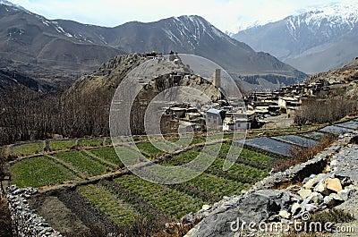 Village of Jhong, Muktinath District, Nepal