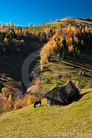 Village landscape in Romania