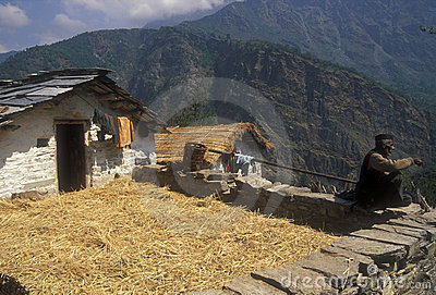 Village Life in the Himalaya s Editorial Stock Photo