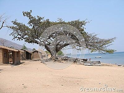 Village in Malawi
