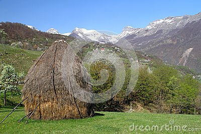 Village in the spring