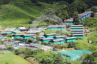 Village at Tea Plantation 01