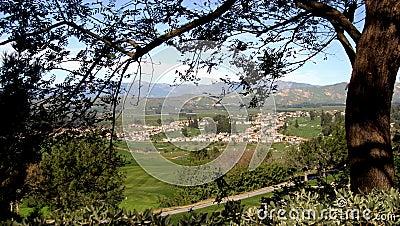 Village Through the Trees