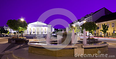 Vilnius town hall and fountain