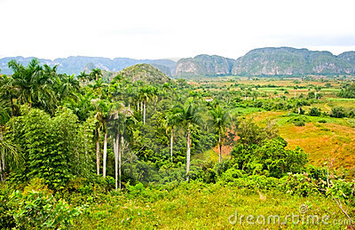 Vinales Valley Royalty Free Stock Photo - Image: 14538635