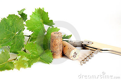 Vine leaves and corks