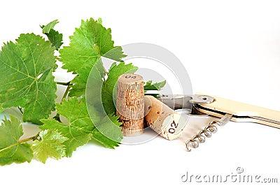 Vine leaves and corks