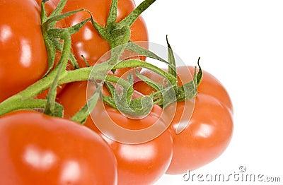 Vine Ripen Tomatoes