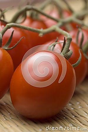 Vine ripened plum tomatoes