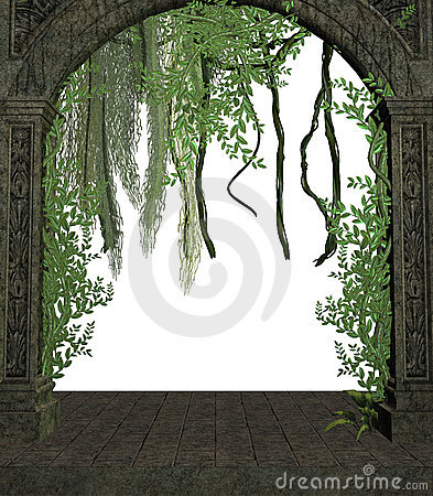 Vines In A Doorway