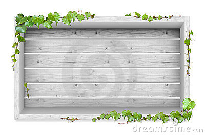 Vines and wood background