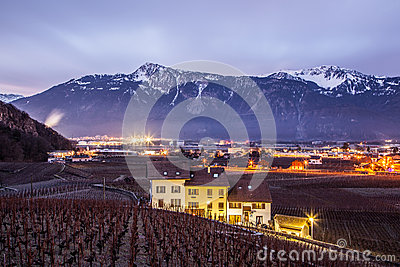 Vineyad and Mountains at night