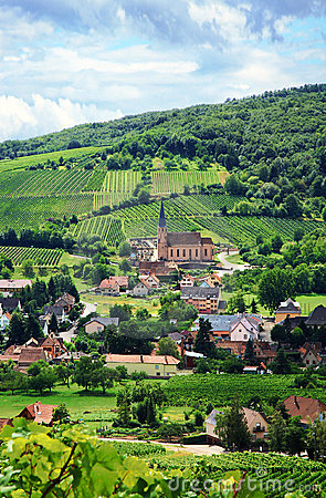 Free Vineyard And Small Village In Alsace - France Royalty Free Stock Photos - 10373908