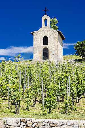 Vineyard and chapel in France