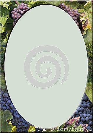 Vineyard-frame