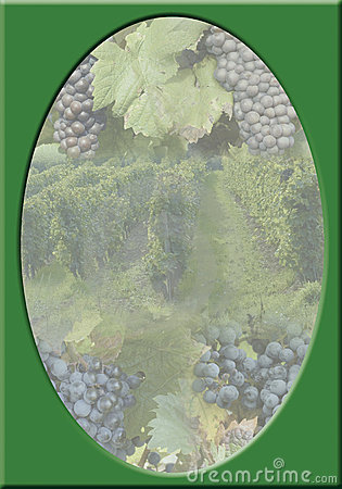 Vineyard-frame