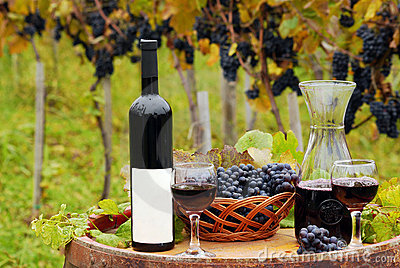 Vineyard with red wine bottle