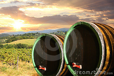 Vineyard with wine barells in Chianti, Tuscany