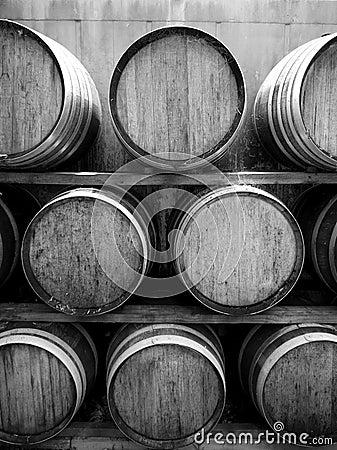 Vineyard: wine barrels v