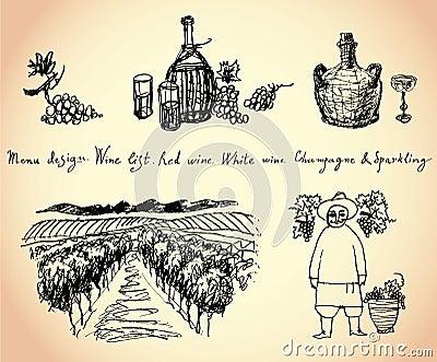 Vineyard. Wine & Grape illustration.
