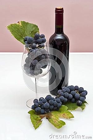 Vino ed uva