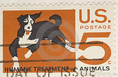 Vintage 1964 Stamp Humane Treatment of Animals