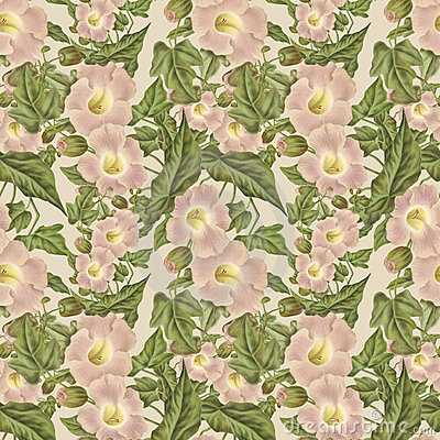 Vintage Antique Pink Flower Pattern
