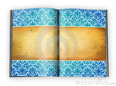 Vintage background on an open book pages