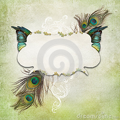 Free Vintage Background With Butterfly Stock Images - 39502364