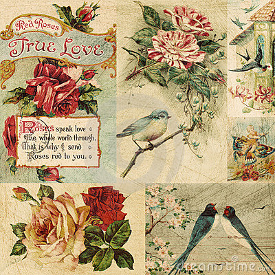 Vintage Bird and flowers collage background Stock Photo