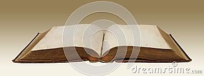 Vintage Blank Book